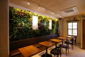 店内 オシャレなグリーンの壁のサムネイル