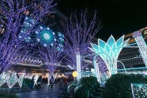 博多駅イルミネーション「光の街・博多」本日最終日!!17時~24時まで!!のサムネイル
