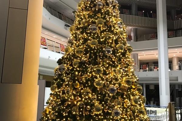 イオン岡山にクリスマスツリーを装飾、設置