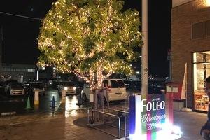 フォレオ博多のクリスマス装飾のサムネイル