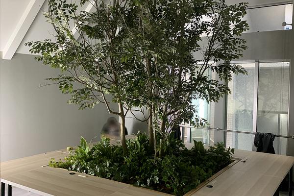 広島県オフィスビル造花の木、緑化のサムネイル