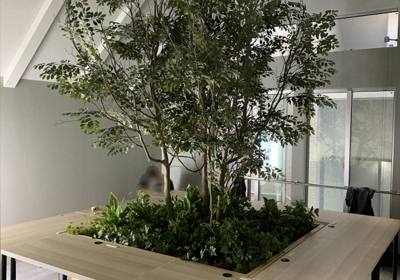 広島県オフィスビル造花の木、緑化